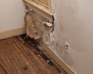 Mold Removal Brookhaven GA
